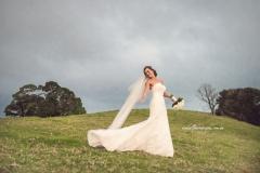 Weddings-At-Tiffanys-Tom-Hall-Photography-Maleny
