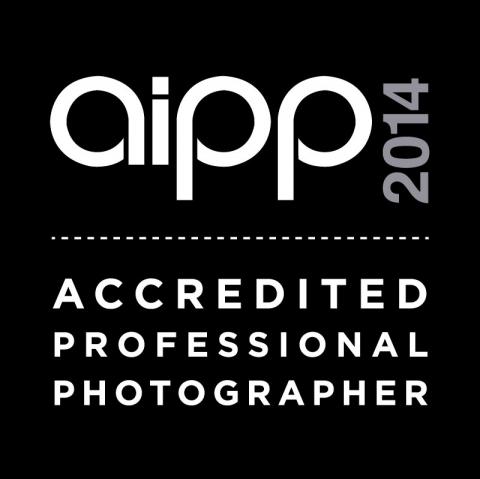 AIPP 2014