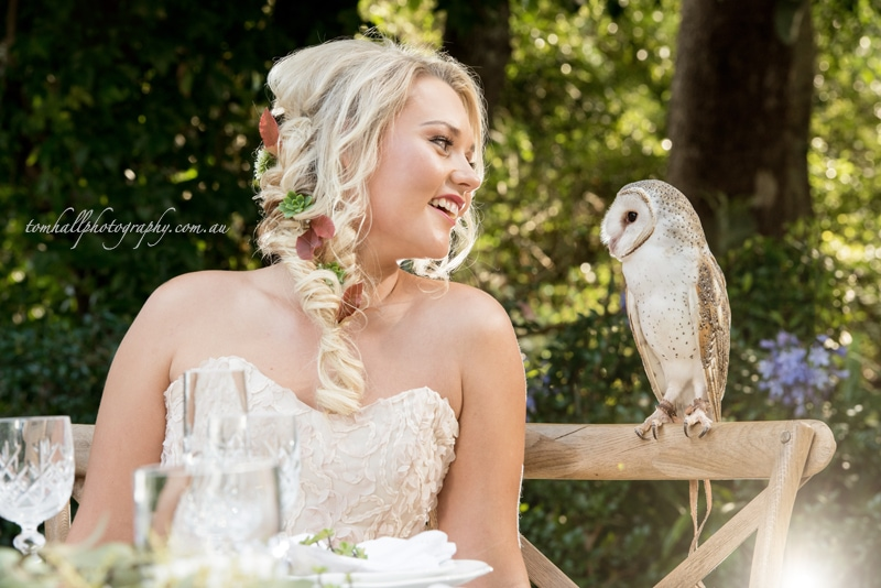 Maleny Wedding Photos