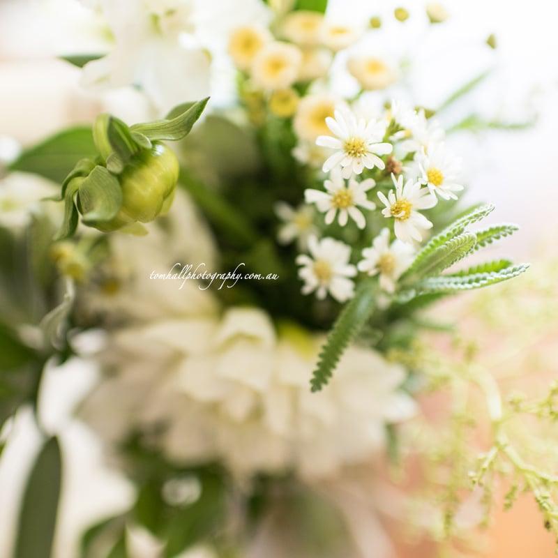 maleny-wedding-photographer-tom-hall-photography-022
