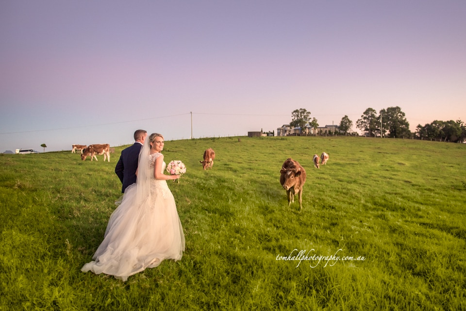 Maleny-Wedding-Photographers-Tom-Hall-Photography-2
