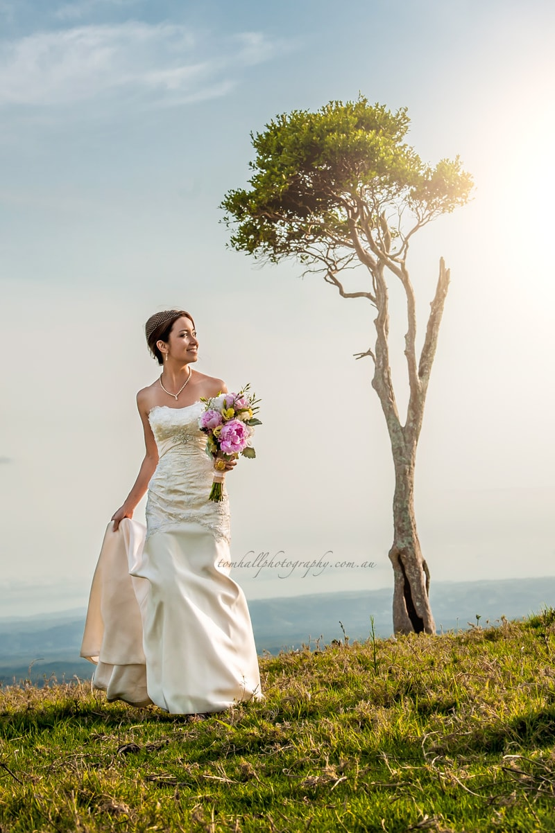 Maleny Wedding Photographer - Tom Hall Photography image 1