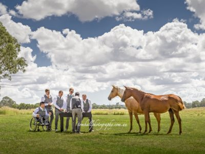 Horses | Brisbane Wedding Photographer - Tom Hall Photography image 2