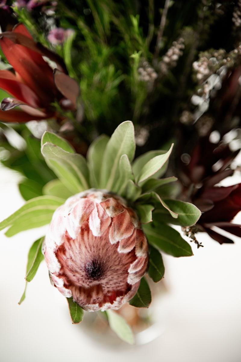Wedding Photographer in Brisbane - Tom Hall Photography 038