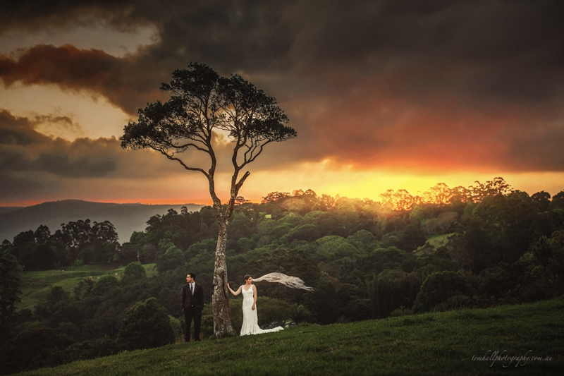 Who-is-the-Best-Wedding-Photographer-in-Maleny